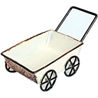 EOZY-Carrello Pavimento Portafiore Giardinaggio Mano Cart con Ruote in Metallo