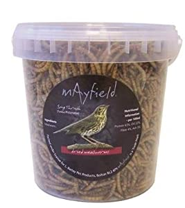 Mayfield Mealworms 1000ml Wild Bird Food
