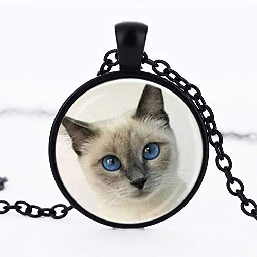 Vintage Katze Anhänger Halskette Katze Auge Runde Glas Tier Halsketten Charms Halsketten Halsband Schmuck Mädchen Geschenk