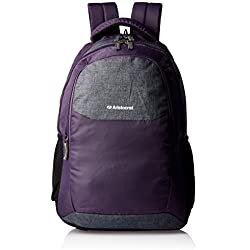 Aristocrat Dio 25 Ltrs Purple Casual Backpack (LPBPDIO4PPL)
