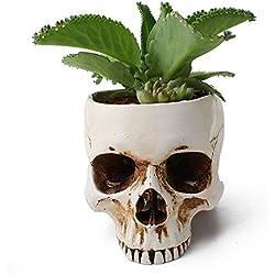 Womdee De cerámica con forma de cráneo blanco, macetas de suculenta, cactus