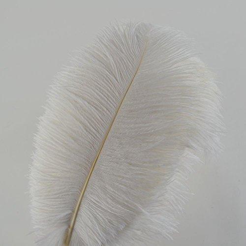 Sowder 10pcs Strauß-Federn 12-14inch (30-35cm) für Haupthochzeits-Dekoration (weiß)