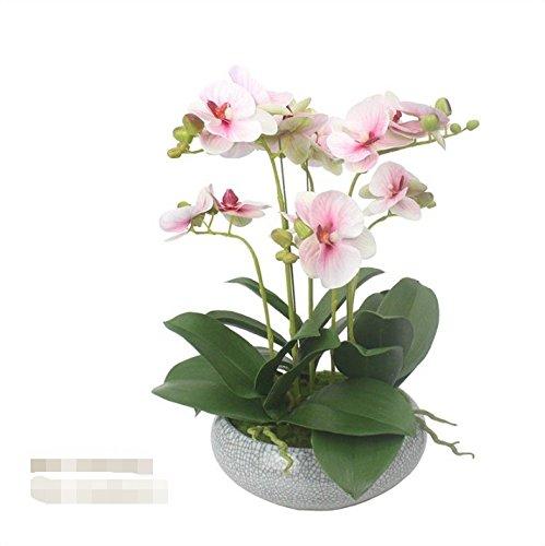 WRXXHZHR Phalaenopsis Künstliche Blume Chinesischen Stil Wohnzimmer Wohnkultur Vergossen Set Rosa 28X28X42Cm