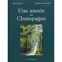 Une année en Champagne
