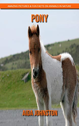 Pony: Amazing Pictures & Fun Facts on Animals in Nature (English Edition)