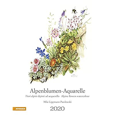 Alpenblumen-Aquarelle. Kalender 2020