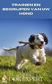 Trainen en begrijpen uw hond