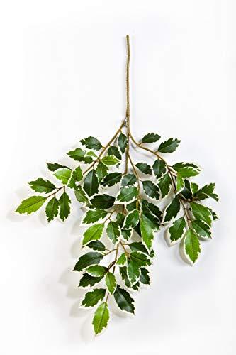artplants Set 24 x Künstlicher Ficuszweig AJITH, grün-weiß, 45 cm – 24 Stück Kunst Ficus/Künstliche Blätter