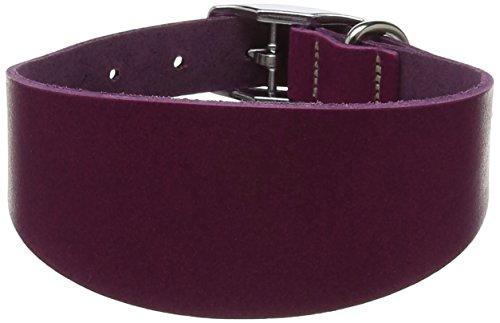 BBD Mascota Productos Whippet Collar de Cuero