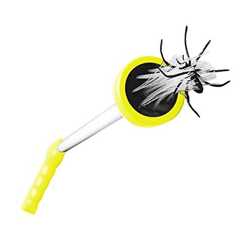 Spinnenabwehr Bestseller