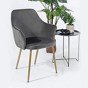 H.J WeDoo Samt Esszimmerstuhl mit Gepolstertem Rücken und Sitz, Retro Stuhl mit Armlehne und Metall Gold Beine – Grau
