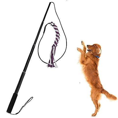 sanzang Outdoor Interaktive Spielzeuge für Hunde ausziehbar Flirt Pole Funny Jagen Tail Teaser und Trainingsgerät für Haustiere