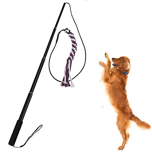 Sanzang Outdoor Interactive Dog Toys Extendable Flirt Pole Funny Chasing Tail Teaser and Exerciser for Pets (S, Black)