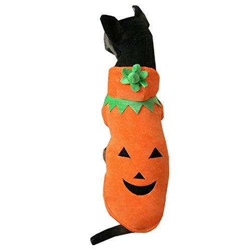 Lustige Kürbis Hund Haustier Hoodie Kleidung Halloween Hund Kostüm Plus Size Anzug Teddy Dressing up Party Bekleidung Bekleidung (Kostüme Plus Halloween Lustige Größe)