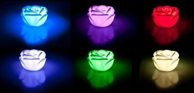 2 Stück - LED Rose mit Farbwechsel - Ambientelicht / Dekolicht oder einfach eine schöne Einschlafhilfe von Avanto bei Lampenhans.de