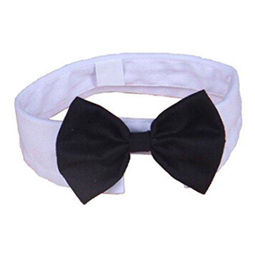 Sanwood niedliches Stripe Fliege Halsband für kleine Hund Katze Pet (Party Phoenix Supplies)