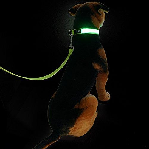 collier-de-chien-collier-de-chien-ensemble-liberer-la-boucle-led-flash-collier-de-chien-de-lumiere-c