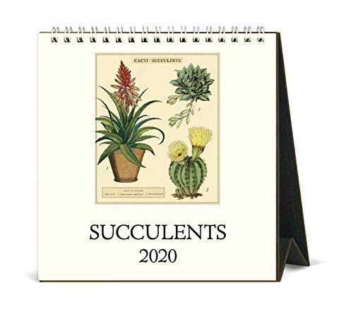 Cavallini 2020 Desk Calendar, Vintage Succulents (CAL20-18)