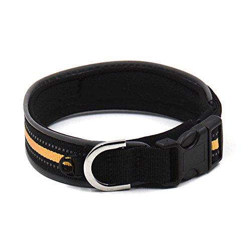 Dxlta Halskette Haustier mit Reflektierende Streifen Nylon verstellbar -