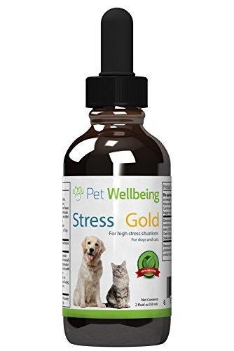 Pet Wellbeing - Lo Stress Oro Per I Cani - Cane Organico Naturale Calmante E L'Ansia Di Soccorso - Per Le Situazioni Stressanti In Canini - 2 Oz (59Ml)
