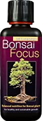 Idea Regalo - Growth Technology - Bonsai Focus, Fertilizzante liquido concentrato per bonsai, 300 ml