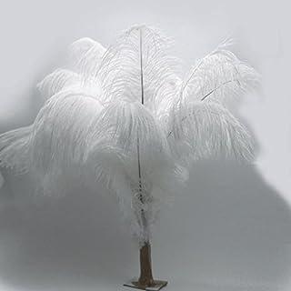 Kolight 100pcs plumes d'autruche Blanc 30,5- 35,6cm plumes naturelles pour mariage, fête, maison, décoration de poils