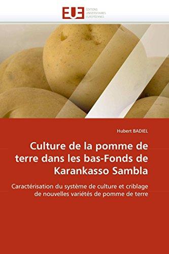 Culture de la pomme de terre dans les bas-fonds de karankasso sambla par Hubert BADIEL