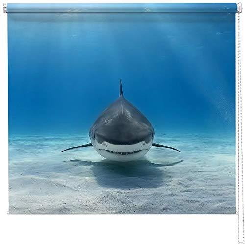 Artylicious Estor con impresión fotográfica de tiburón Estor Enrollable Impreso digitalmente, persianas para baño, Cocina, Oficina y Dormitorio, 100w x 120cm