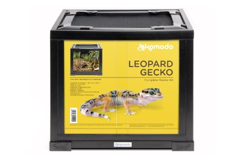 komodo-leopard-gecko-advanced-kit