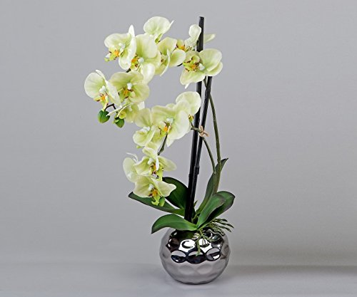 Formano Orchidee im Silber-Topf, 50 cm, grün