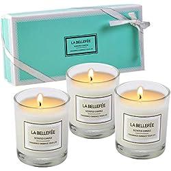 LA BELLEFÉE Bougies Parfumées de Rose Vanille Jasmine Cadeau Parfait à Offrir pour Anniversaire Fêtes Mariages et Déco