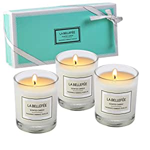 LA BELLEFÉE Scented Candles Set Votive Candle of Rose, Vanilla, Jasmine (Pack of 3) - Small Size