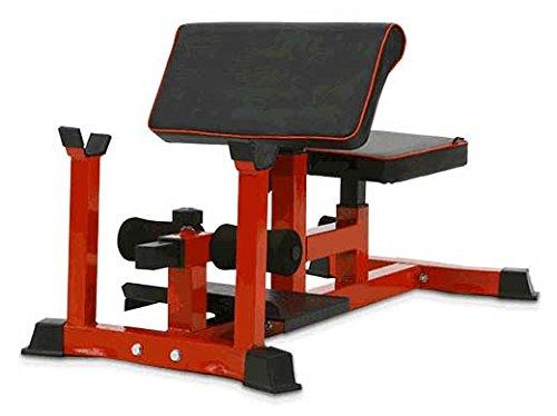 Pullup Fitness - Panca per sissy squat, curl alla panca Scott, Sit up, addominali, cosce, glutei,...
