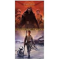 Partido Ênico 5 x 2.5 pies de Star Wars 7 Puerta Cartel