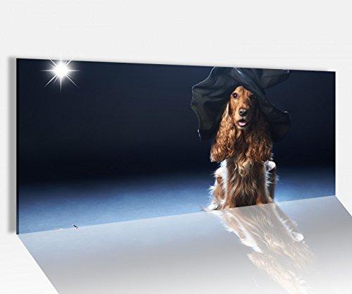 cm Hund Hexe Hut Hexenbesen Halloween Glasbild Bilder Acrylglas Acrylglasbilder Wandbild 14A520, Acrylglas Größe1:100cmx40cm ()