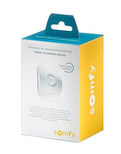 Somfy 2401361 Sensore di Movimento per Tahoma, Bianco/Grigio