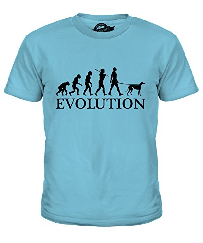 CandyMix Lévrier Greyhound Évolution Unisexe T-Shirt Enfant Garçon Fille,  Taille 12 Ans,