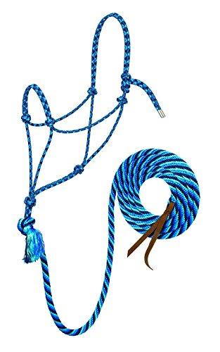 Weaver Leder Silberspitz # 95Seil Halfter mit 12-feet führen, 35-9525-W33, Pacific Blue/Navy/Turquoise, Average