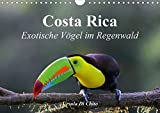 Costa Rica - Exotische Vögel im Regenwald (Wandkalender 2020 DIN A4 quer): Impressionen aus der Vogelwelt in Costa Rica (Monatskalender, 14 Seiten ) (CALVENDO Tiere) -