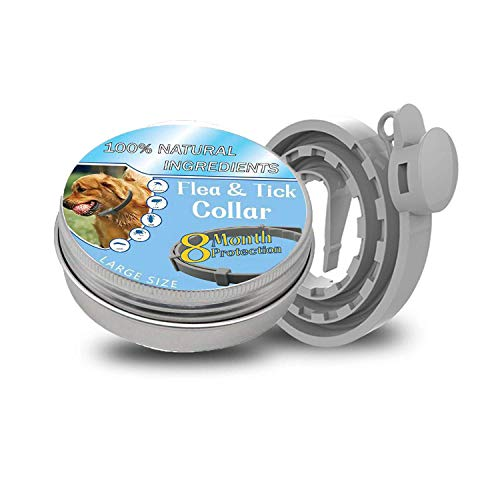 Pet Paradise Waterproof Flea and Tick Collar for Dogs | Tick Prevention for Dogs and Cats | Anti Tick and Flea Plant Based Formula | Universal Size Fits All | 1 Piece Collar per Box