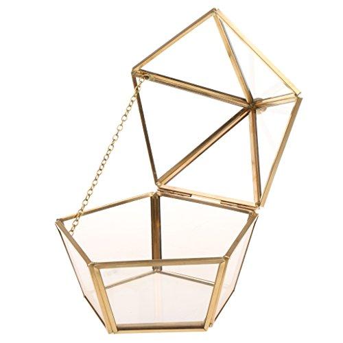 MagiDeal Geometrisches Glas Terrarium Box Glas Sukkulente Pflanzen Pflanzgefäß Deko Epochenstil -...