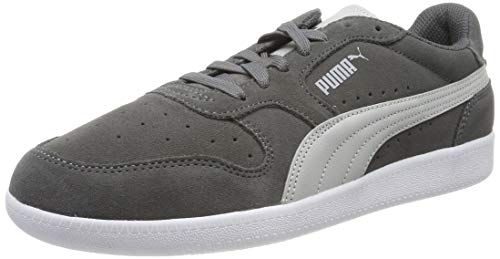 Puma Unisex-Erwachsene Icra Trainer SD Sneakers, Grau (Castlerock-High Rise-Puma White 45) , 42 EU