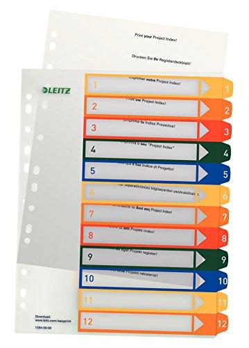 Leitz 12940000 PC-beschriftbares Plastik Register (Polypropylen, A4) mehrfarbig