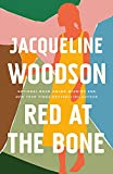 Red at the Bone: Longlisted for the Women's Prize for Fiction 2020