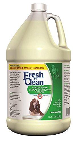 Artikelbild: Lambert Kay Fresh 'n Clean Oatmeal N Baking Soda Pet Shampoo, Dispersionsfarbe für Beton