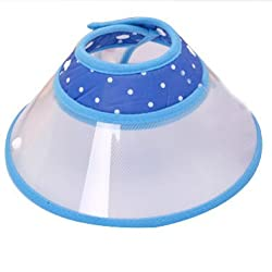 Eastlion Cartoon Style Design Elizabethan Collar Dog Cat Pet Wound Healing & Recovery Cone(blue,l)