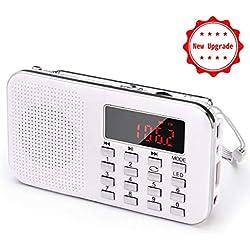 PRUNUS L-218AM Mini-Radio Portable Ultra-Fine AM(MW)/FM MP3 Micro SD AUX USB, Batterie Amovible Rechargeable 1200MAH Enregistre et Numérote Les Stations de Radio [Se Fait Uniquement Automatiquement]