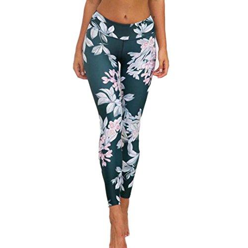 Yoga Hose Internet Damen 3D Print Fitness Lounge Athletische Hosen Yoga Leggings (Grün, M)