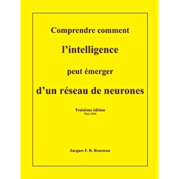 Comprendre comment l'intelligence peut emerger d'un reseau de neurones