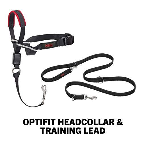 Halti Optifit Halfter und Trainingsleine Kombipack, Large Head Collar, schwarz